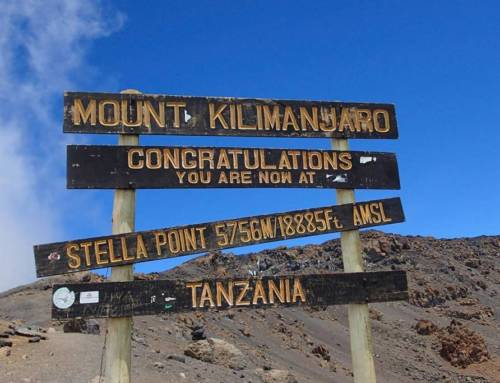 JOINT STATEMENT ON PROPOSED KILIMANJARO CABLEWAY