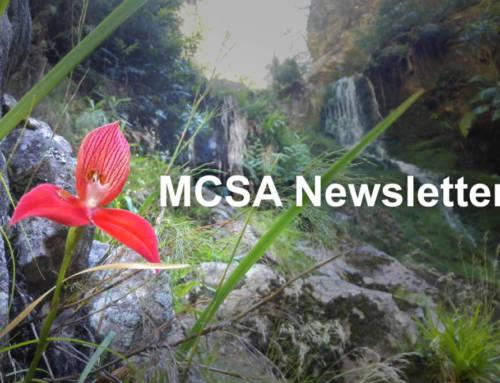 E-newsletter 2019-09